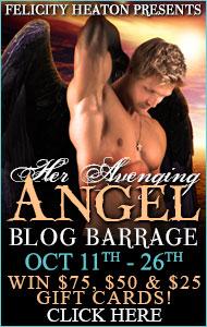 heravengingangel-barrage-button