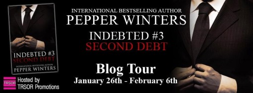 second debt blog tour