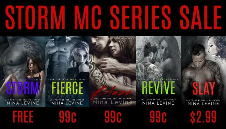 Sale The Storm Mc Series By Nina Levine Book Loving Pixies