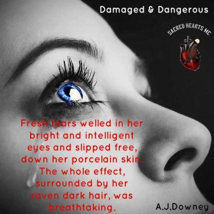 DamagedTeaser8