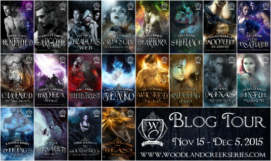 Blog Tour Banner with Covers smaller