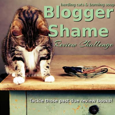 2017-blogger-shame-large