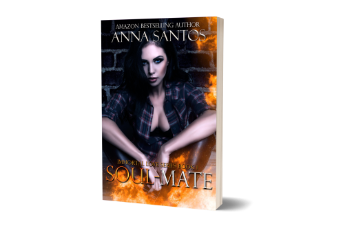 soulmate-mock-up-no-bg-1